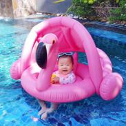 Sunshade Flamingo Baby Float